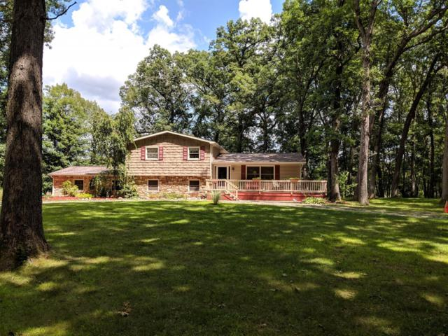 2215 Kalmbach, Grass Lake, MI 49240 (MLS #3259060) :: The Toth Team