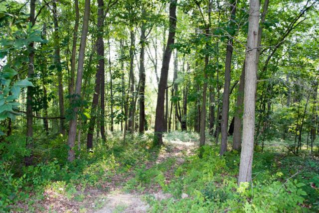 8821 Autumn Trail, Dexter, MI 48130 (MLS #3259532) :: Berkshire Hathaway HomeServices Snyder & Company, Realtors®