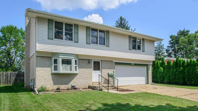 271 Nichols Drive, Saline, MI 48176 (MLS #3259543) :: Berkshire Hathaway HomeServices Snyder & Company, Realtors®