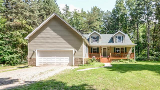 2477 Sarossy Lake, Grass Lake, MI 49240 (MLS #3259591) :: The Toth Team