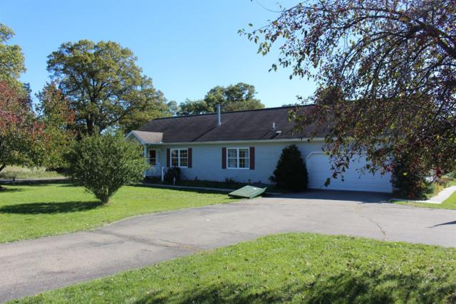 10461 Pauline Drive, Jackson, MI 49201 (MLS #3260306) :: Berkshire Hathaway HomeServices Snyder & Company, Realtors®