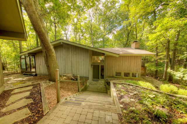 3595 Daleview Drive, Ann Arbor, MI 48105 (MLS #3260340) :: The Toth Team