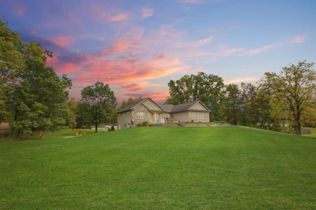 14505 Meadowpark Drive, Pinckney, MI 48169 (MLS #3260715) :: Keller Williams Ann Arbor