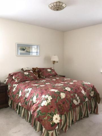 6595 Sauk Trail, Saline, MI 48176 (MLS #3260900) :: Berkshire Hathaway HomeServices Snyder & Company, Realtors®