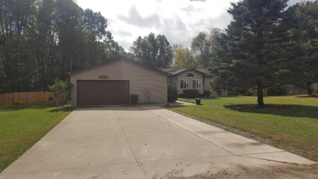 6501 Ellen Lane, Jackson, MI 49201 (MLS #3260987) :: Keller Williams Ann Arbor