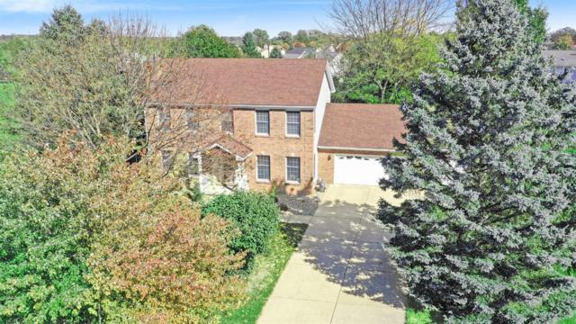 1374 Provincial Drive, Chelsea, MI 48118 (MLS #3261034) :: Keller Williams Ann Arbor