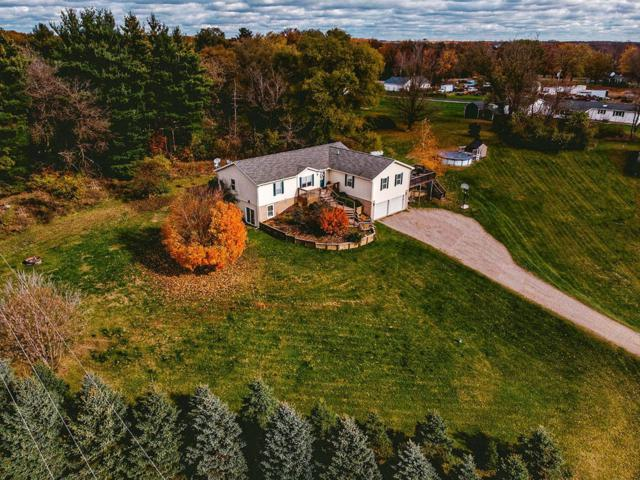 13410 Miracle Drive, Chelsea, MI 48118 (MLS #3261632) :: The Toth Team