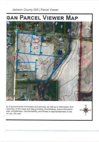 0 Curtis Road, Grass Lake, MI 49240 (MLS #3261649) :: Berkshire Hathaway HomeServices Snyder & Company, Realtors®