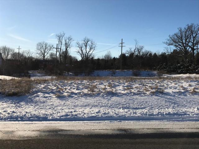 4581 Lake Vista, Dexter, MI 48130 (MLS #3262465) :: Keller Williams Ann Arbor
