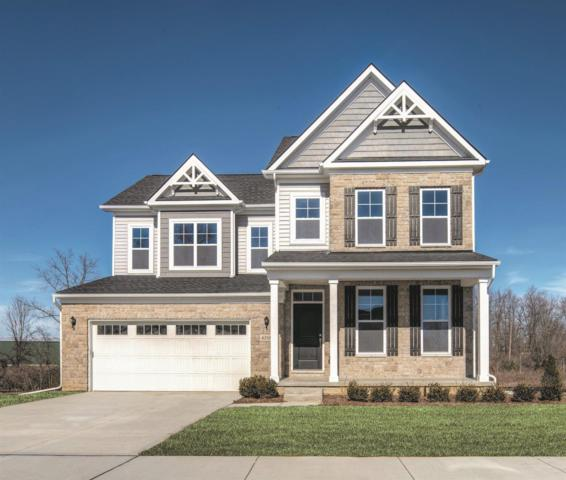 6316 N Trailwoods Drive, Ann Arbor, MI 48103 (MLS #3262838) :: The Toth Team