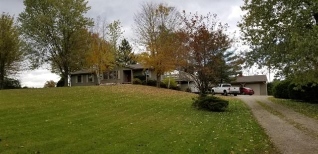 1221 Springville Highway, Adrian, MI 49221 (MLS #3264459) :: Berkshire Hathaway HomeServices Snyder & Company, Realtors®