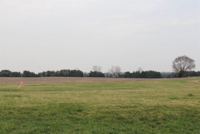 0 Wolf Lake B2 Road, Grass Lake, MI 49240 (MLS #3264629) :: Berkshire Hathaway HomeServices Snyder & Company, Realtors®