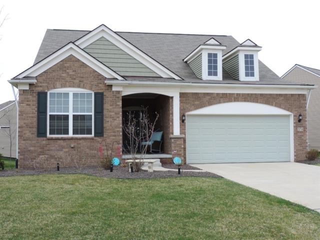 374 Bryce Court, Howell, MI 48843 (MLS #3264747) :: The Toth Team