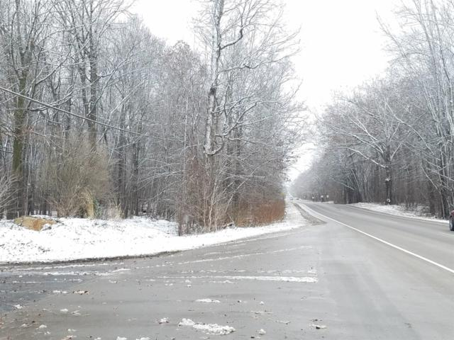 0 S Zeeb Road Vcnt, Ann Arbor, MI 48103 (MLS #3264777) :: The Toth Team