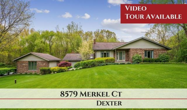 8579 Merkel Road, Dexter, MI 48130 (MLS #3265636) :: Keller Williams Ann Arbor