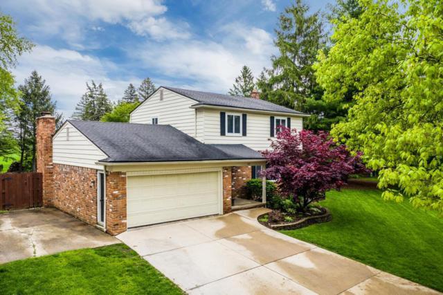 507 Old Creek Court, Saline, MI 48176 (MLS #3265654) :: Berkshire Hathaway HomeServices Snyder & Company, Realtors®