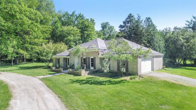2919 Parkridge Drive, Ann Arbor, MI 48103 (MLS #3266172) :: The Toth Team