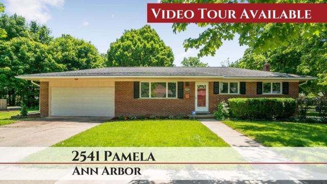 2541 Pamela Avenue, Ann Arbor, MI 48103 (MLS #3266262) :: The Toth Team