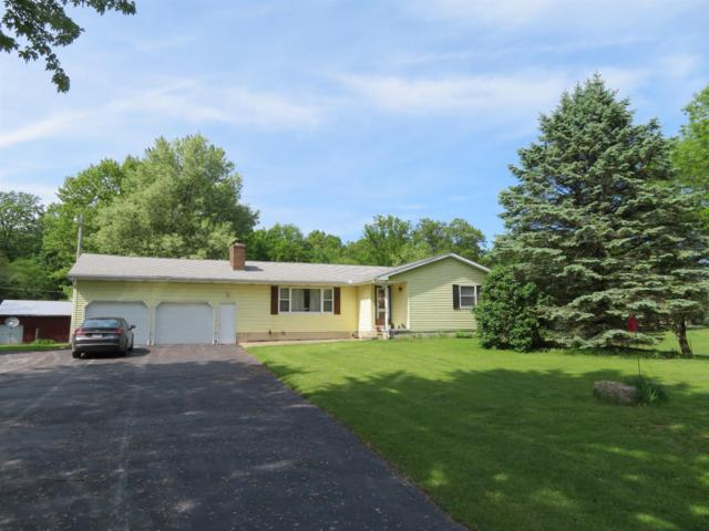 2061 E Irish Road, Dundee, MI 48131 (MLS #3266362) :: Berkshire Hathaway HomeServices Snyder & Company, Realtors®