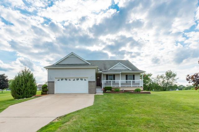 10042 Whitetail Lane, Jackson, MI 49201 (MLS #3266445) :: Berkshire Hathaway HomeServices Snyder & Company, Realtors®