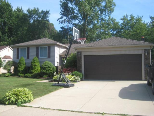 30963 Mayville Street, Livonia, MI 48152 (MLS #3267101) :: The Toth Team