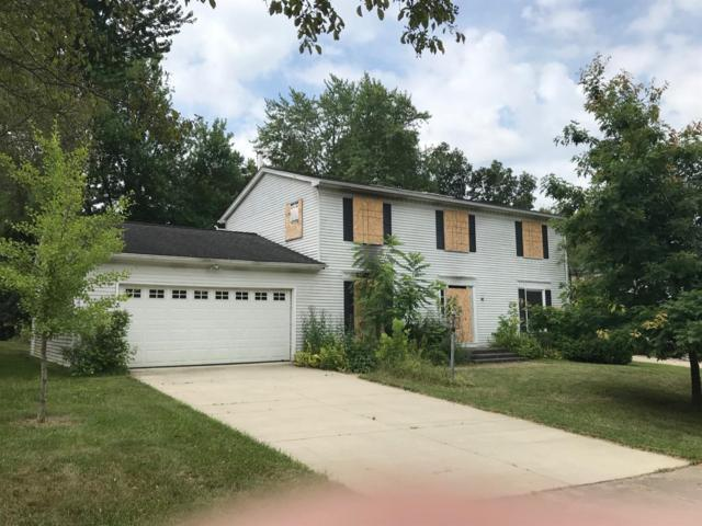 3513 Paisley Court, Ann Arbor, MI 48105 (MLS #3267120) :: The Toth Team
