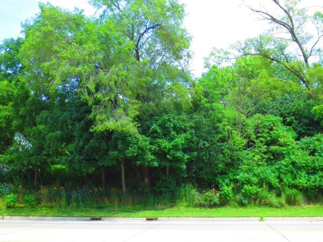 0 S Wagner Road, Ann Arbor, MI 48103 (MLS #3267233) :: The Toth Team