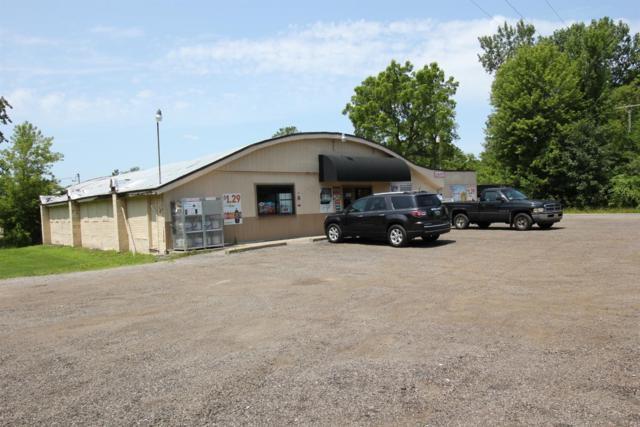 12763 Ostrander Road, Maybee, MI 48159 (MLS #3267403) :: The Toth Team