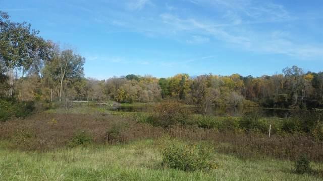 4715 Ridge Creek Lane, Ann Arbor, MI 48105 (MLS #3267869) :: The Toth Team
