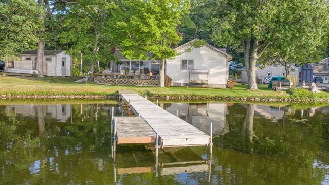 1036 Guinan Drive, Chelsea, MI 48118 (MLS #3269541) :: The Toth Team