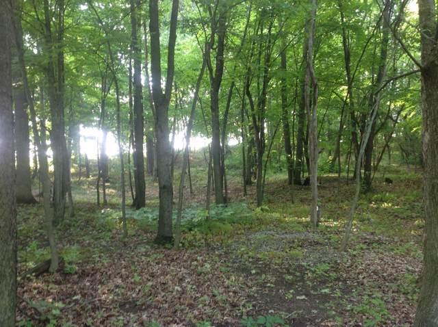 10039 Wildlife Ridge, Manchester, MI 48158 (MLS #3270266) :: Berkshire Hathaway HomeServices Snyder & Company, Realtors®