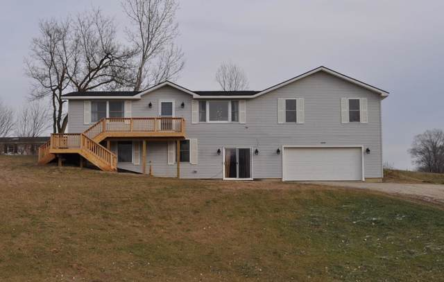 13396 Miracle Drive, Chelsea, MI 48118 (MLS #3270280) :: The Toth Team
