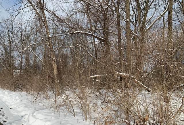 505 Glendale Circle, Ann Arbor, MI 48103 (MLS #3271159) :: The Toth Team