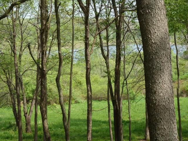 3260 Tanglewood Trail, Chelsea, MI 48118 (MLS #3273150) :: Berkshire Hathaway HomeServices Snyder & Company, Realtors®