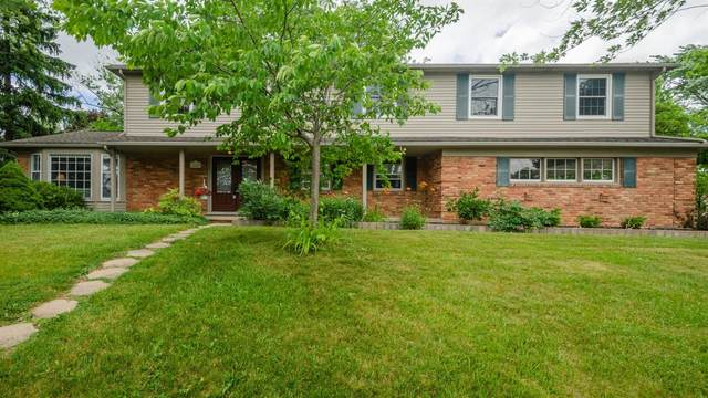 1845 Mershon Drive, Ann Arbor, MI 48103 (MLS #3274102) :: The Toth Team