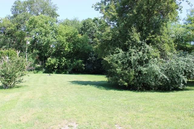 0 Luella Avenue, Ann Arbor, MI 48103 (MLS #3274999) :: The Toth Team