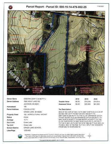 0 Curtis Road, Grass Lake, MI 49240 (MLS #3275037) :: Berkshire Hathaway HomeServices Snyder & Company, Realtors®
