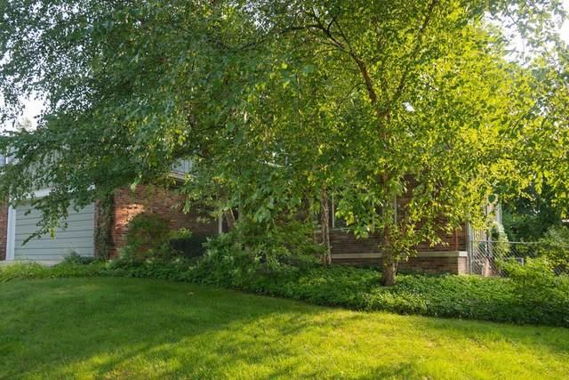 1237 Ardmoor Avenue, Ann Arbor, MI 48103 (MLS #3276332) :: The Toth Team
