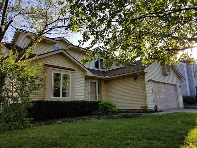 1162 Cutler Circle, Saline, MI 48176 (MLS #3276448) :: Berkshire Hathaway HomeServices Snyder & Company, Realtors®