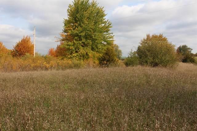0 Reiman Parcel C Road, Grass Lake, MI 49240 (MLS #3277166) :: Berkshire Hathaway HomeServices Snyder & Company, Realtors®