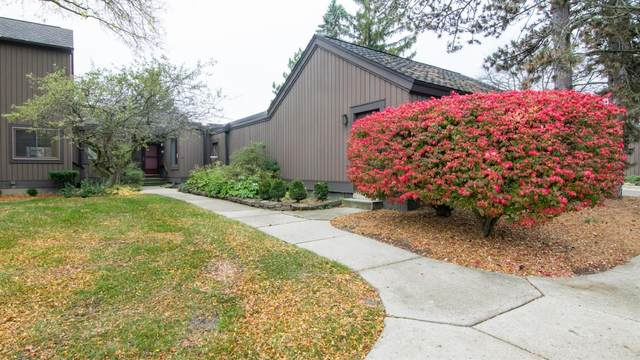 17 Northwick Court, Ann Arbor, MI 48105 (MLS #3277282) :: The Toth Team