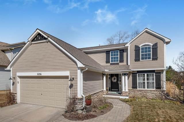 8206 Webster Drive, Dexter, MI 48130 (MLS #3280212) :: Berkshire Hathaway HomeServices Snyder & Company, Realtors®