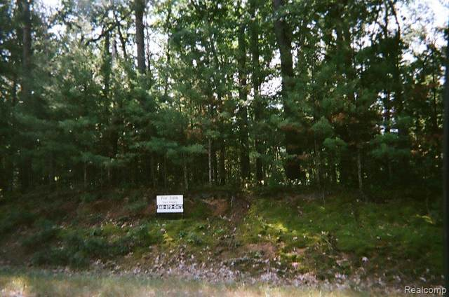 0 S Regimental Way, Grayling, MI 49738 (MLS #R218017513) :: Berkshire Hathaway HomeServices Snyder & Company, Realtors®