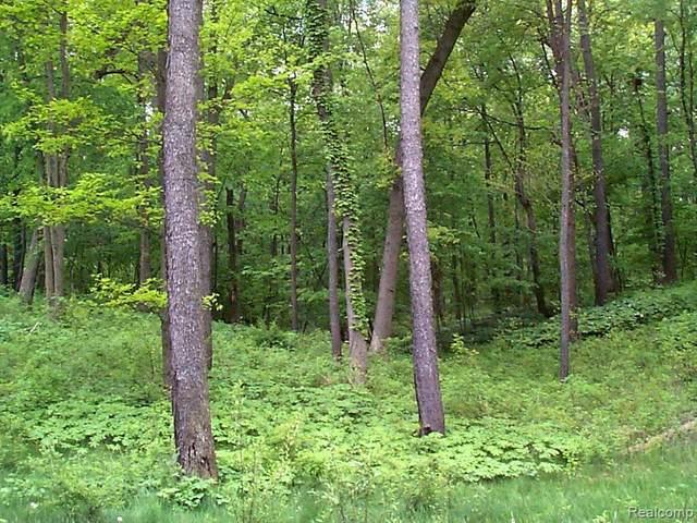 3650 Woodridge Drive, Howell, MI 48843 (MLS #R219047589) :: Berkshire Hathaway HomeServices Snyder & Company, Realtors®