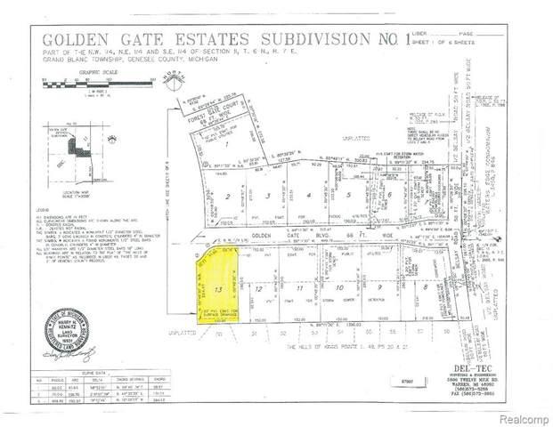 0 Golden Gate Boulevard, Grand Blanc, MI 48439 (MLS #R2200041553) :: Berkshire Hathaway HomeServices Snyder & Company, Realtors®