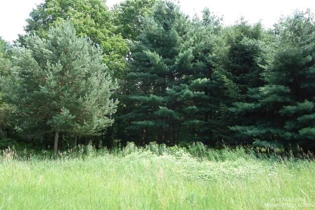 0 Greenwood Road, Grass Lake, MI 49240 (MLS #3282210) :: Berkshire Hathaway HomeServices Snyder & Company, Realtors®
