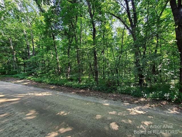 0 Joslin Lake Road Road, Chelsea, MI 48118 (MLS #3283508) :: Berkshire Hathaway HomeServices Snyder & Company, Realtors®