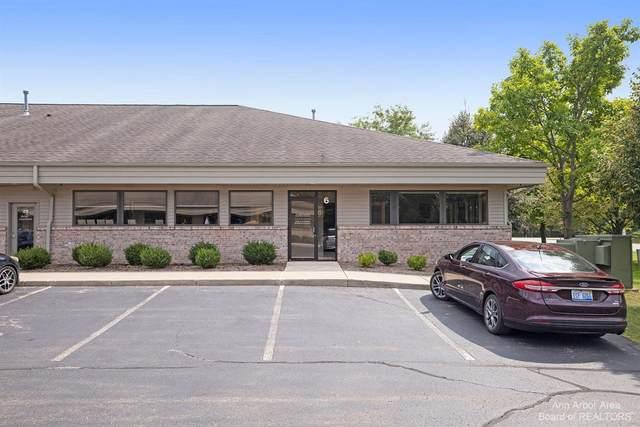 180 Little Lake Drive, Ann Arbor, MI 48103 (MLS #3283684) :: Berkshire Hathaway HomeServices Snyder & Company, Realtors®