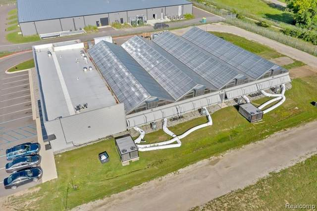 10310 Harvest Park, Dimondale, MI 48821 (MLS #R2210077360) :: Berkshire Hathaway HomeServices Snyder & Company, Realtors®