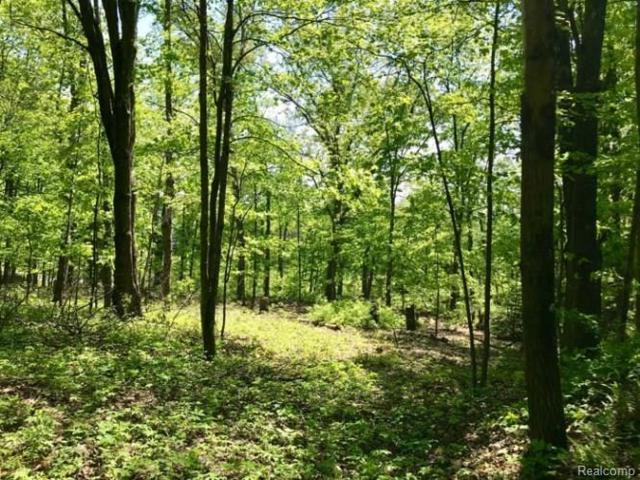 13 Winding Woods, Milford, MI 48380 (MLS #R218055488) :: The Toth Team